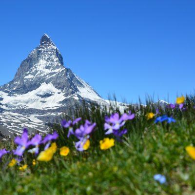 Un jour, la montagne m'a dit…